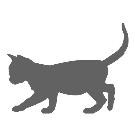 Katze4
